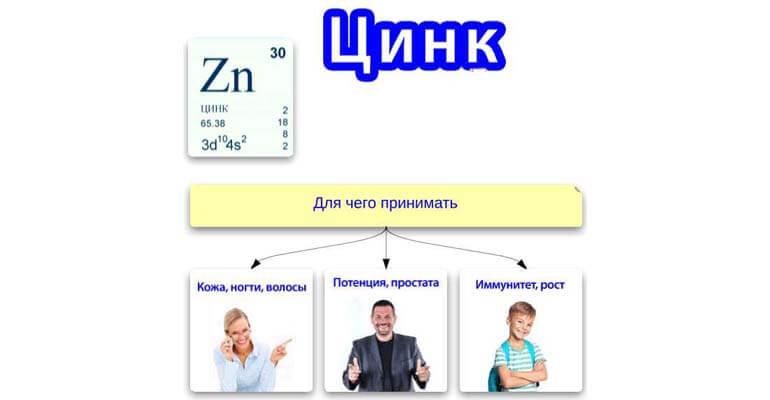 цинк +в каких продуктах содержится больше