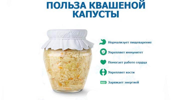 польза квашеной капусты +для организма