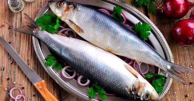 витамин в12 +в продуктах питания